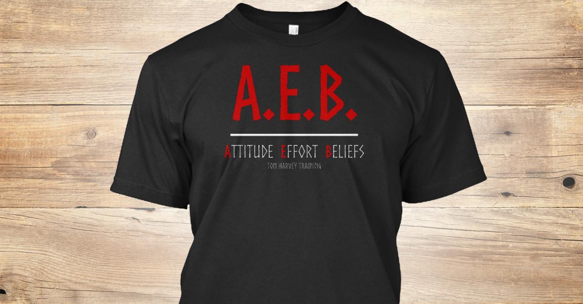 Attitude Effort Beliefs