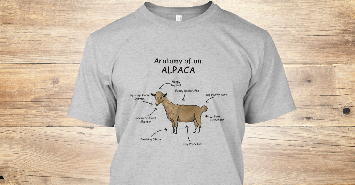 881c3fbc0 Anatomy Of An Alpaca - anatomy of alpaca fuzzy back puffs big fliffy tuft  preeking sticks floppy top het system green sheeter hey processor Products  from ...