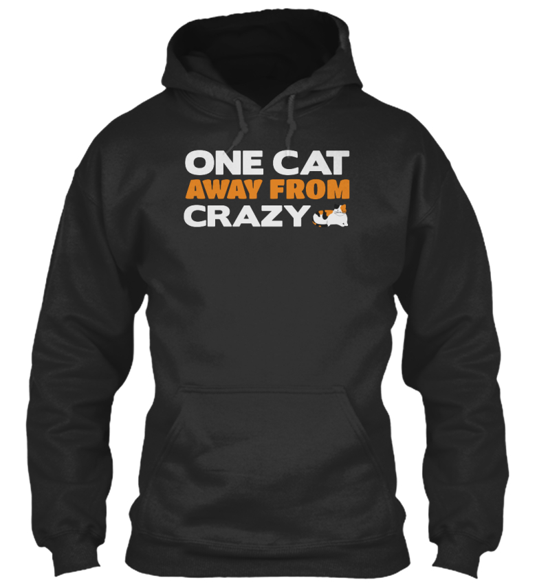 Un Lady chat away from Crazy Lady Un Lover-Standard College Sweat à capuche ef2888